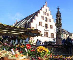 Freiburg Münsterplatz mit Kornhaus