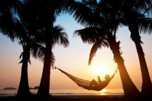 Hängematte unter Palmen
